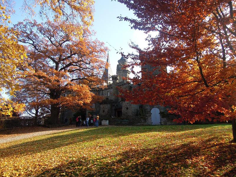 Herbstliche Wanderung zur Löwenburg (Foto © Karl-Hartmut Kipp)