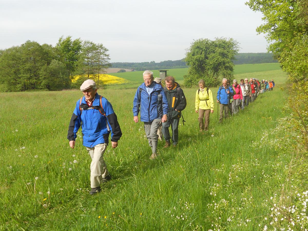 Wanderung auf dem Grimmsteig, 1. Etappe (Foto © Reinhard Duelfer 2014)