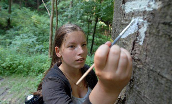 Zeichen setzen: Verena Vesper hat eine Ausbildung als Wegezeichnerin absolviert. (Foto © J. Kuhr)